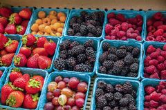 Cartons of fresh berries for sale at a grocery store Royalty Free Stock Images