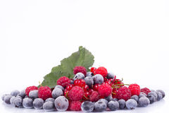 Variety of berries Stock Images