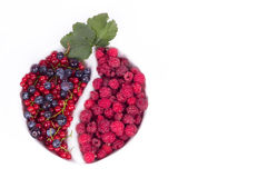 Variety of berries with leaf in glass Stock Photos