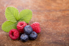Variety of berries Royalty Free Stock Image