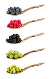 Variety of berries on wooden spoons. stock photos