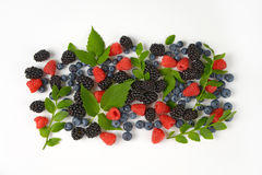 Variety of berry fruits Stock Photography