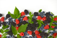 Variety of berry fruits Royalty Free Stock Photography