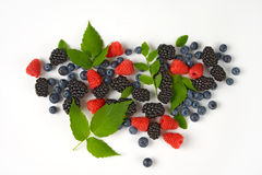 Variety of berry fruits Royalty Free Stock Photo
