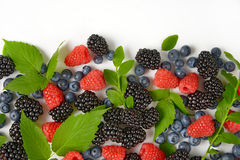 Variety of berry fruits Stock Photo