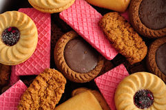 Variety of biscuits. Full frame of a variety of biscuits Royalty Free Stock Image