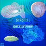 Variety of blue and colorful seashell in different sizes vector illustration
