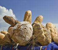 Variety of breads Stock Image