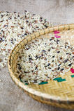 Variety of brown rice Stock Image