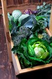 Variety of cabbages in wooden basket on brown background. Harvest. Close up. Stock Photos