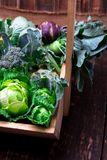 Variety of cabbages in wooden basket on brown background. Harvest. Close up. Royalty Free Stock Image