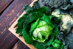 Variety of cabbages in wooden basket on brown background. Harvest. Top view. Stock Photo
