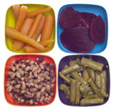 Variety of Canned Vegetables in Colorful Bowls Stock Images