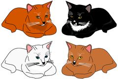 Variety of cats. Illustration of variety of cats Stock Photography