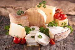 Variety of cheese Royalty Free Stock Photos