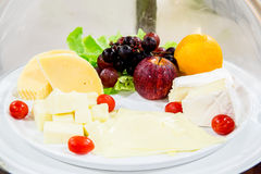 Variety of cheese Royalty Free Stock Images