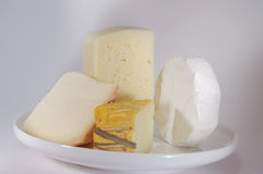 Variety of cheese. Royalty Free Stock Image