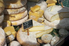 A variety of cheeses on the counter Stock Image