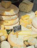 A variety of cheeses on the counter Stock Images
