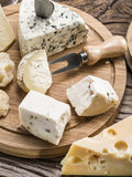 Variety of cheeses. Vintage stiles. Royalty Free Stock Images
