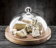 Variety of cheeses. Vintage stiles. Royalty Free Stock Photography