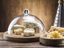 Variety of cheeses. Vintage stiles. Stock Images