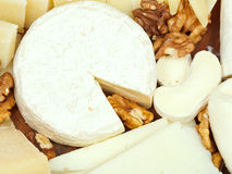 Variety of cheeses on wooden plate Stock Image