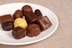Variety of chocolates on a white plate. Variety of light and dark chocolates on a white plate Royalty Free Stock Photo