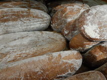 Variety of choice of fresh bread Royalty Free Stock Photography