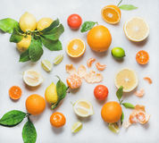 Variety of citrus fruit for making healthy smoothie or juice. Variety of fresh citrus fruits for making juice or smoothie over light grey marble table background Stock Image