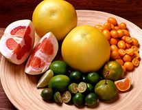 Variety of citrus fruits Royalty Free Stock Images