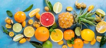 Variety of citrus fruits Royalty Free Stock Photos