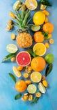 Variety of citrus fruits Royalty Free Stock Photo
