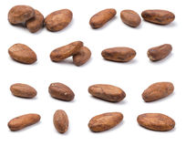 Variety of cocoa beans Royalty Free Stock Image