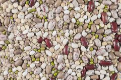 Variety of legumes. Variety of colored legumes to make soup Royalty Free Stock Photos
