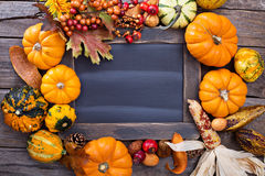 Variety of colorful decorative pumpkins around a chalkboard Royalty Free Stock Images