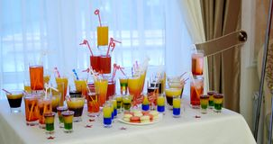 Variety of colorful green blue yellow red and white beautiful alcohol sweet shooters shots cocktail fresh beverage in stock video footage