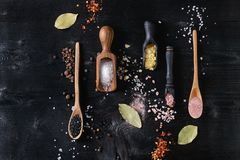 Variety of colorful salt. Variety of different colorful salt yellow saffron, pink, black himalayan, white sea and fleur de sel in wooden spoons with black, chili Royalty Free Stock Photo