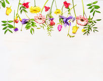 Variety of colorful spring flowers lined Border, space  text, top view Royalty Free Stock Images
