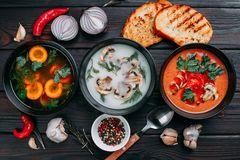 Variety of colorful vegetables cream soups and ingredients for s stock images