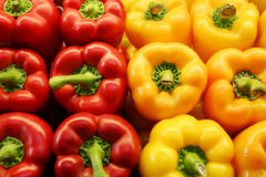 Variety of coloured bell peppers background . Royalty Free Stock Image