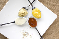 Variety of condiments. Variety of colorful condiments on spoon Stock Images