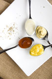 Variety condiments on spoon. Put on white plate Stock Image