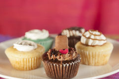 Variety of Cup cakes Royalty Free Stock Photography