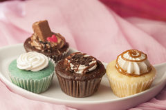 Variety of Cup cakes Royalty Free Stock Images