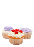 Variety of cupcakes with decorative techniques. Variety of vanilla cupcakes with various buttercream decorations on white background Royalty Free Stock Photos