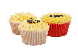 Variety of cupcakes with decorative techniques. Variety of vanilla cupcakes with various buttercream decorations on white background Stock Photography