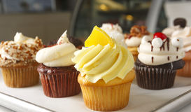 Variety of Cupcakes Royalty Free Stock Photo