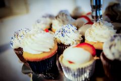 Close up of a cupcake variety platter. royalty free stock images