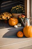Decorative composition with pumpkins and flowers. Royalty Free Stock Images